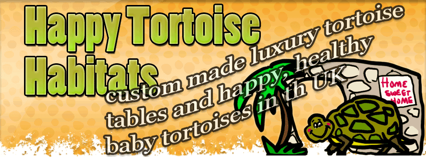 Happy Tortoise Habitat FaceBook Page for Tortoise Tables in England