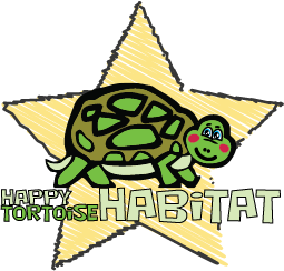 Happy Tortoise Habitat square small star tortoise logo