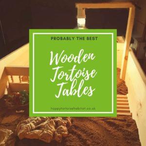 Tortoise Tables for Sale Premium Quality